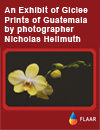Exnibit of Giclee Prints of Guatemala