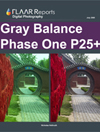 Gray Balance Phase One 25+